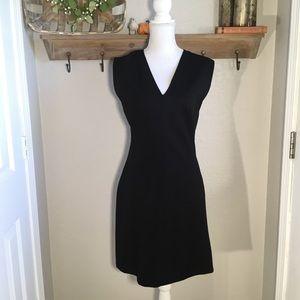 Everlane Size 6 Flare Dress V-Neck Black work